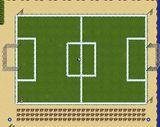Estadio Tibia.jpg