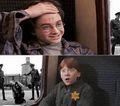 Harry Potter e .jpg