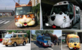 Transporte furry.png