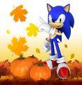 Sonic no outono.jpg