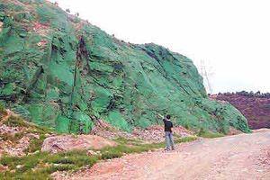 河南省の崖に自生するペンキ