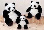 Panda 03.jpg