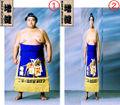 Yanagawa diet.jpg