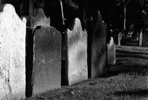Ser pri graveyard-00.jpg