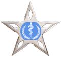Medical Ninjastar.png