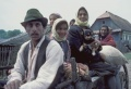 Photo11 gypsy cart family cc l.jpg