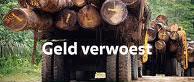 GeldVerwoest.png