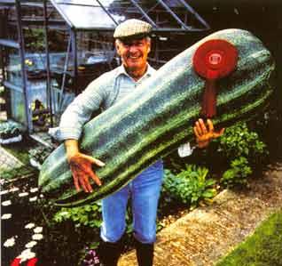 KomkommerkweekGROOT.jpg