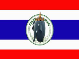 Bangkokvlag.jpg