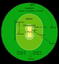 Cricketveld.jpg
