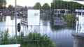 UtrechtWildwaterkonijn.jpg