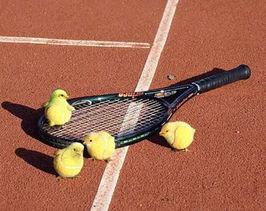 Schatteugh! Ahem, een tennisraket dus...