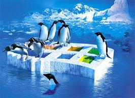 Pinguinwindows.jpg