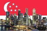 Singapore Vlag.jpg