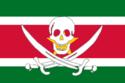 Vlag van Suriname