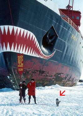 Eskimo groet bezoekers vanaf zolder