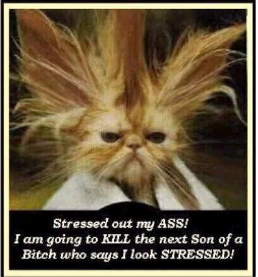 Stressed.jpg