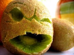 Stilig kiwi!.png