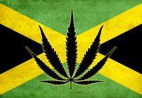 Jamaica flagg.jpg