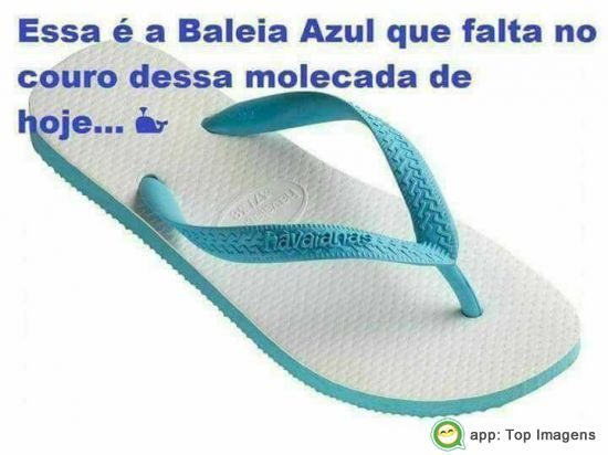 Baleia-azul-que-ta-faltando-7623S04LQk0stS.jpg