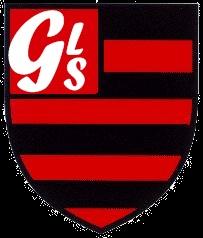 FLA GLS.jpg