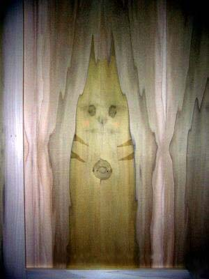 Pikachu haunted door.jpg