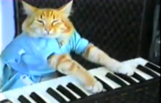Arquivo:Keyboard cat.jpg