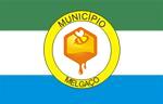 Bandeira de Melgaço.png