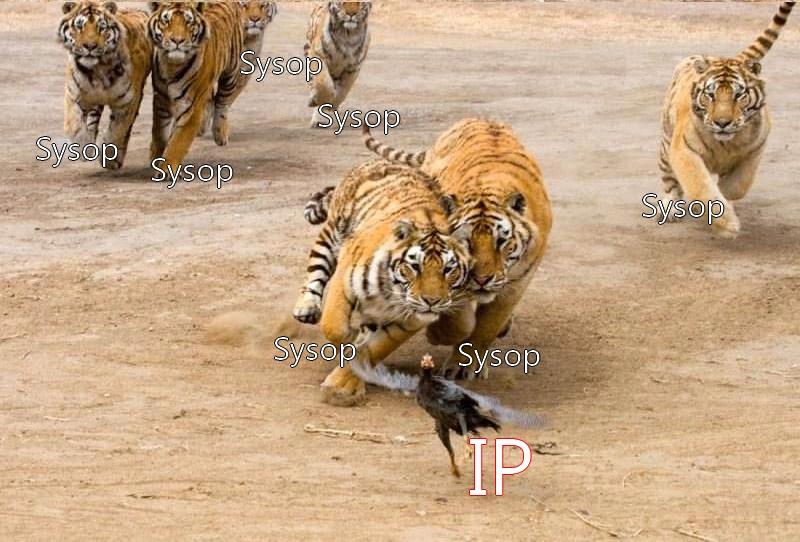 Imagem:IP e Administradores.jpg