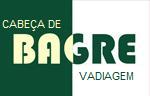 Bandeira de Bagre.png