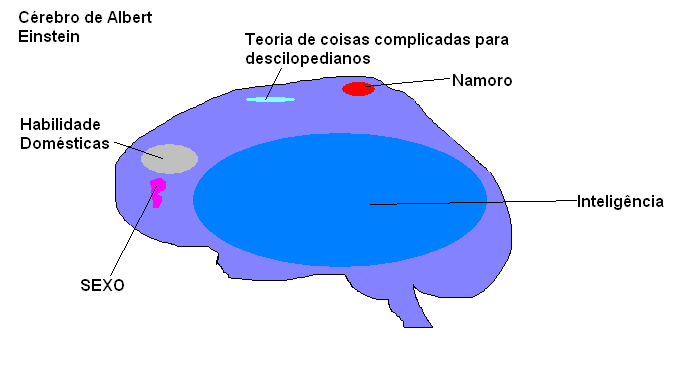 Cérebro do Albert Einstein
