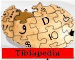 Tibiapedia.JPG