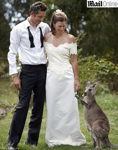 Casamento-canguru.jpg