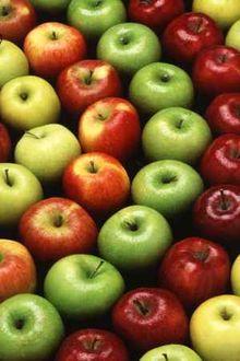 Maçãs verdes e vermelhas se degladiando por sua preferência.