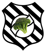 Escudo do Figueirense.png