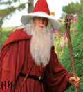 Papai Noel Gandalf.jpg