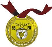 Medalhabenfiquista.jpg