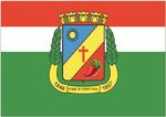 Bandeira de Caruaru.png