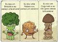Gogumelo broculis.jpg