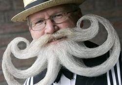 Beard contest.jpg