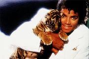 Michael Jackson também é adepto do Cheiramento de Gatinhos, por isso seu nariz acabou-se!