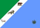 Bandeira de Mato Grosso do Sul.png