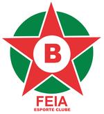 Escudo do Boa.png