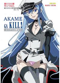 Akame ga Kill capa.png