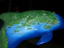 Dolphin map.jpg