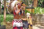 Som indígena.jpg