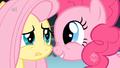 Pinkie starts singing.png