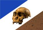 Bandeira de Tocantins.png