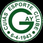 Escudo do Goiás.png