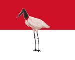 Bandeira de Bujaru.png